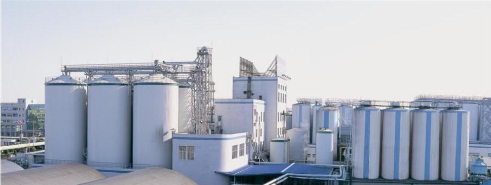 Storage Silos Online Shop, Best Grain Silos and Steel Silos for Sale